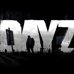 The Memoirs of DayZ